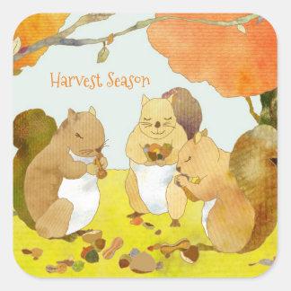 Ernte-Jahreszeit-Eichhörnchen Quadratischer Aufkleber
