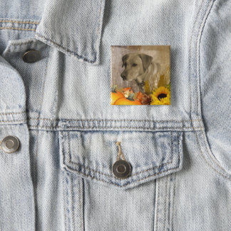 Ernte Labrador retriever Quadratischer Button 5,1 Cm