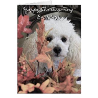 Erntedankgeburtstags-Pudelhundnotecard Mitteilungskarte