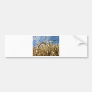 Ernten der Getreide und des Sommer-Himmels Auto Sticker