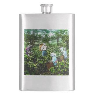 Ernten grüne Teeblatt-alter Japan-Bauern Flachmann