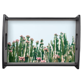 Erröten Kaktus Tablett