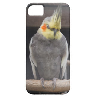 Errötender Cockatiel-Fall Etui Fürs iPhone 5