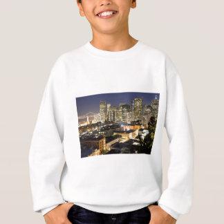 Erschütterungs-Träume von Ihrem Haar Sweatshirt