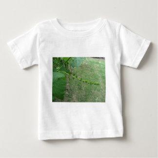 Erste Knospen auf weiße Maulbeerbaum (Morus alba) Baby T-shirt