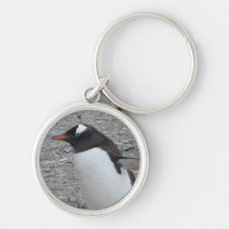 Erstklassiges rundes Keychain: Pinguin Schlüsselanhänger