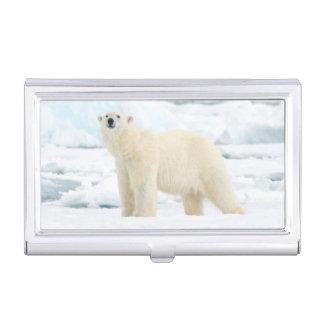 Erwachsener Eisbär auf der Suche nach Nahrung Visitenkarten Dose