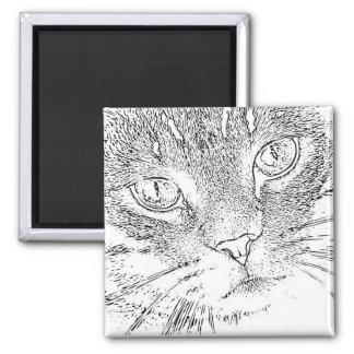 Erwachsener Farbton-Magnet: Katzen-Gesicht Quadratischer Magnet