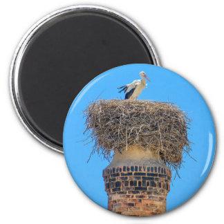 Erwachsener Storch im Nest auf chimney.JPG Runder Magnet 5,7 Cm