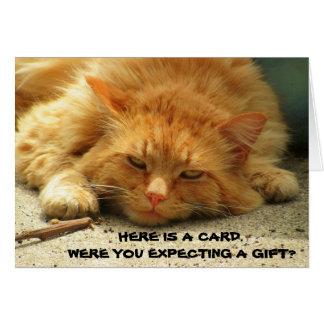 Erwarteten Sie ein Geschenk? Das ist niedlich. Grußkarte