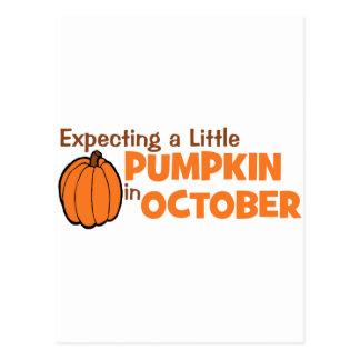 Erwartung einen kleinen Kürbis im Oktober Postkarten