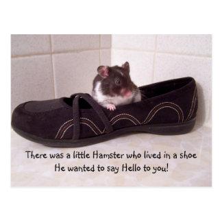 Es gab einen kleinen Hamster…. Postkarte