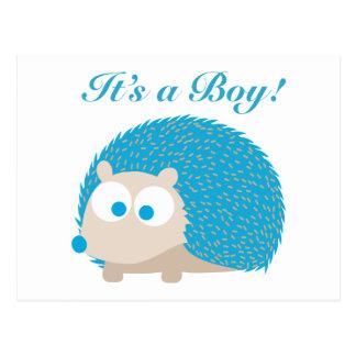Es ist ein Junge! Igel Postkarte