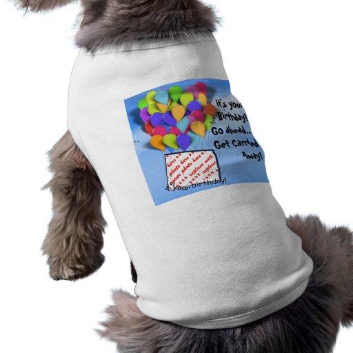 Es ist Ihr Geburtstag! Gehen Sie voran und erhalte Haustierbekleidung