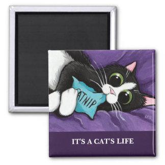 Es ist Katzen-Kunst-Magnet einer Katze des Leben-| Quadratischer Magnet