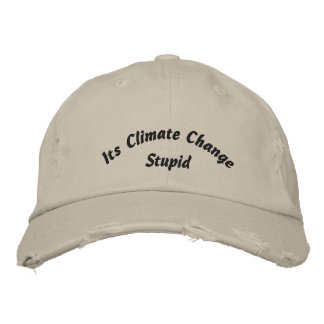 Es ist Klimawandel-dummer gestickter Hut
