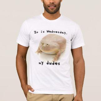 Es ist Mittwoch meine Typen T-Shirt