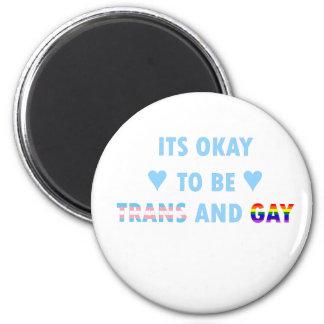 Es ist okay, Transport und Homosexuelles (v2) zu Runder Magnet 5,1 Cm