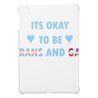 Es ist okay, Transport und Homosexuelles (v3) zu iPad Mini Hülle