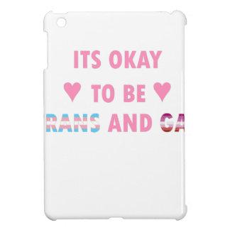 Es ist okay, Transport und Homosexuelles (v4) zu iPad Mini Hülle