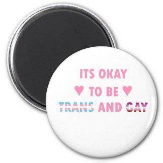Es ist okay, Transport und Homosexuelles (v4) zu Runder Magnet 5,1 Cm