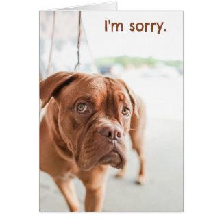 Es tut mir leid Entschuldigungskarte mit Karte