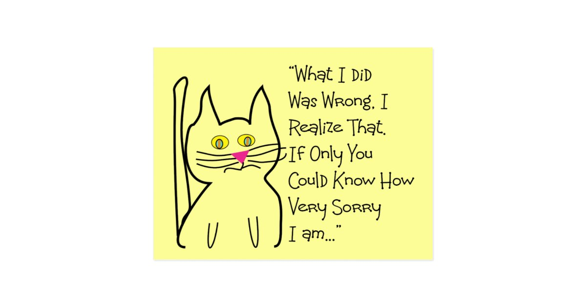 Es tut mir leid Gruß-Karten--Katzen-Entwurf Postkarte
