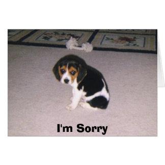 Es tut mir leid grußkarte