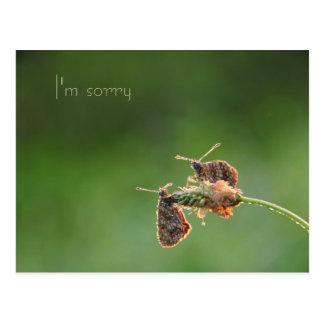Es tut mir leid postkarte