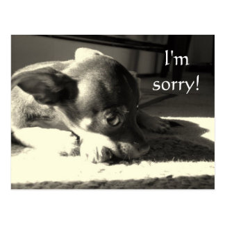 Es tut mir leid! postkarte