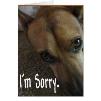Es tut mir leid trauriger Hund Karte