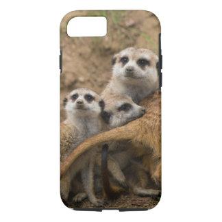 Es war nicht ich meerkats. iPhone 8/7 hülle
