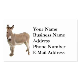 Esel-Fotografie-Entwurf Visitenkarten