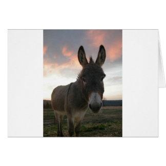 Esel-Kunst Grußkarte