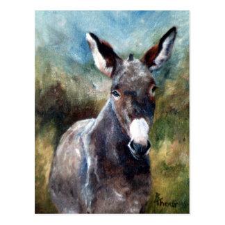 Esel-Porträt-Postkarte Postkarte