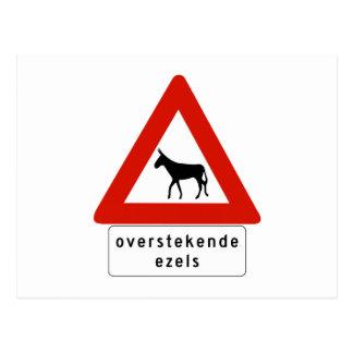 Esel-Überfahrt (2), Zeichen, niederländische Postkarte