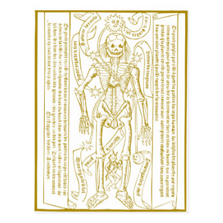 Esoterisches Skelett Postkarten