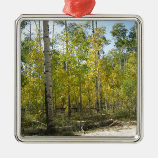 Espen im Fall Silbernes Ornament