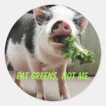 Essen Sie Grüntöne, nicht mich Runde Sticker
