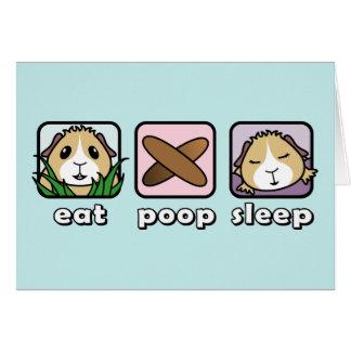 Essen Sie kacken Schlaf-Meerschweinchen-Gruß-Karte Karte