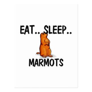 Essen Sie Schlaf MURMELTIERE Postkarte