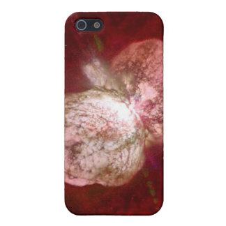 Eta Carinae super enormer Stern iPhone 5 Cover