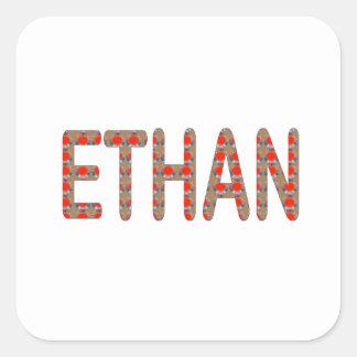ETHAN nom Name AUFKLEBER Shirts n GESCHENKE