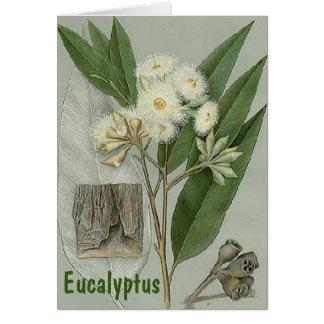 Eukalyptusgrußkarte Karte