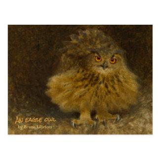 Eule CC0710 Brunos Liljefors Eagle wild lebende Postkarte
