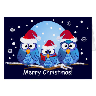 Eulen mit Weihnachtsmannmützen Karte