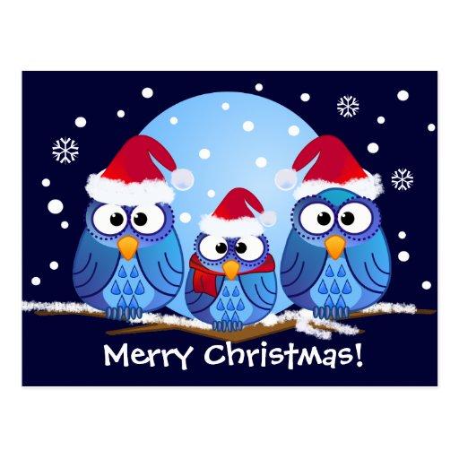 Eulen mit Weihnachtsmannmützen Postkarten
