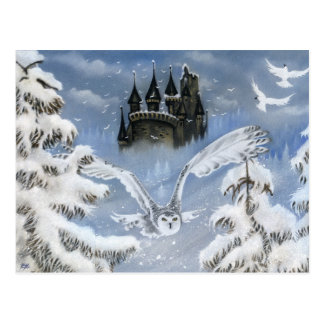 Eulen-Schloss-Winter-Märchen-Postkarte Postkarte