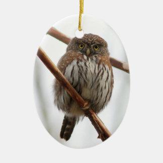 Eulen-Weihnachtsverzierung - Nordc$pygmäe-eule Keramik Ornament