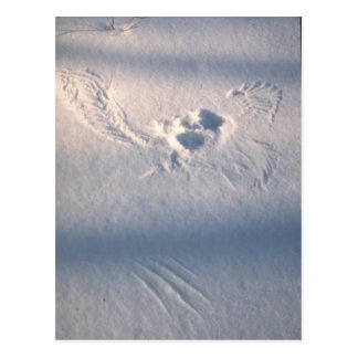 Eulenfederimpressum im Schnee Postkarte